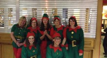 Elf & Safety Team